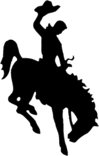 200px-Bucking_Horse_and_Rider_logo
